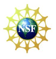 NSF-ICON